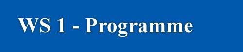 WS-1 programme